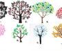 Vyberte si jeden ze stromů a zjistíte o sobě něco co jste možná nevěděli! Budete mile překvapeni!