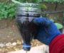 Geniální způsob jak pěstovat zeleninu na okenním parapetu v obyčejných plastových lahvích!