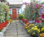 Nejkrásnější zahradní květiny, které udělají z Vaší zahrádky kouzelné místo! Máte některou z nich?