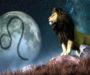 10 překvapivých důvodů proč je Lev tím nejlepším znamením zvěrokruhu!